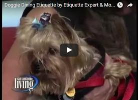 doggie dining etiquette